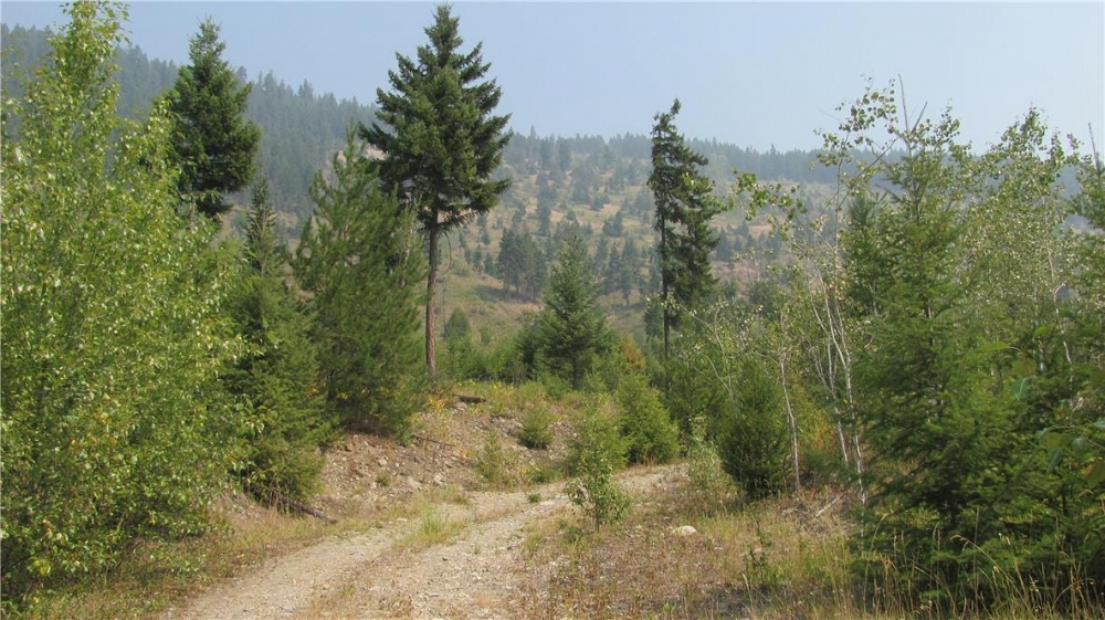 136Acres Sugar Lake-Sihlis Road Vernon Photo 20