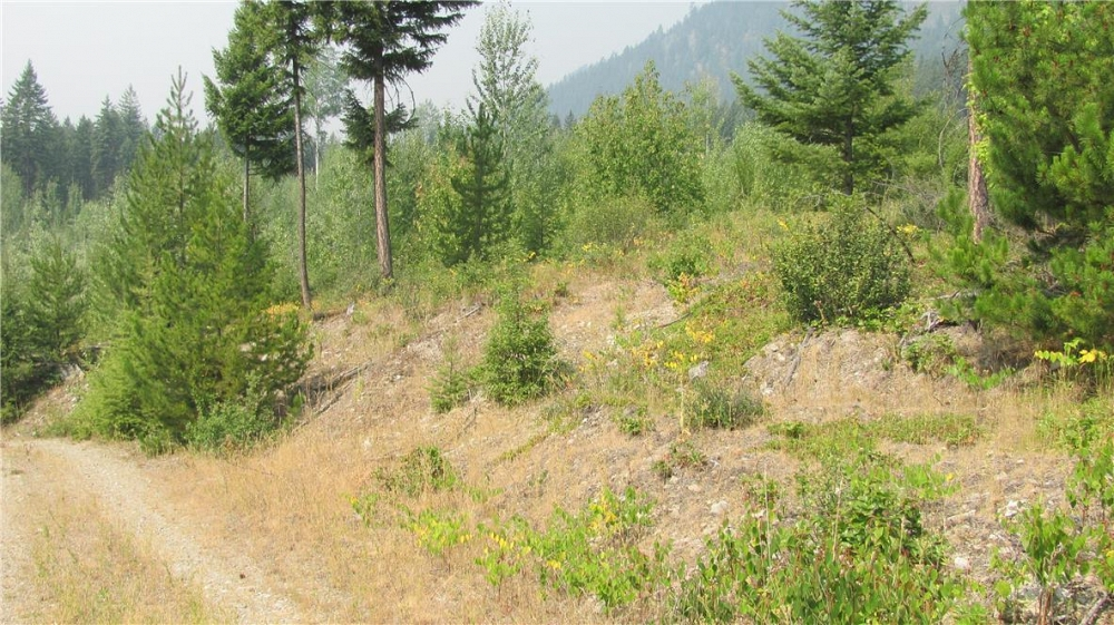 136Acres Sugar Lake-Sihlis Road Vernon Photo 21