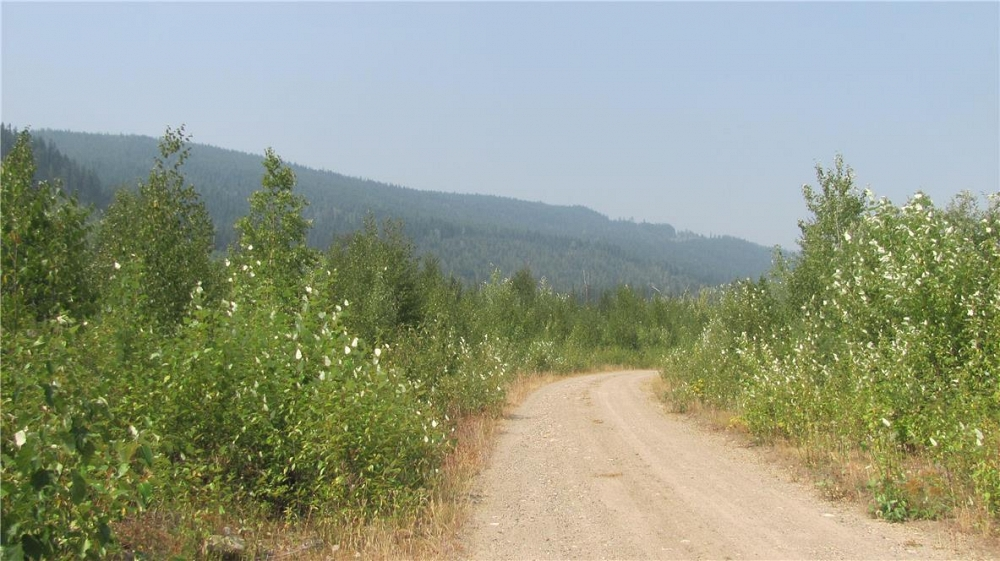 136Acres Sugar Lake-Sihlis Road Vernon Photo 22