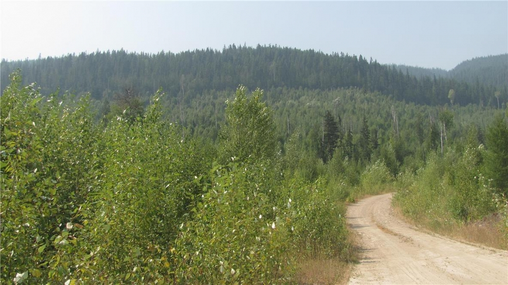 136Acres Sugar Lake-Sihlis Road Vernon Photo 23